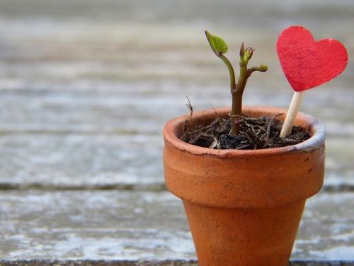 ELT-Resourceful-growth-mindset